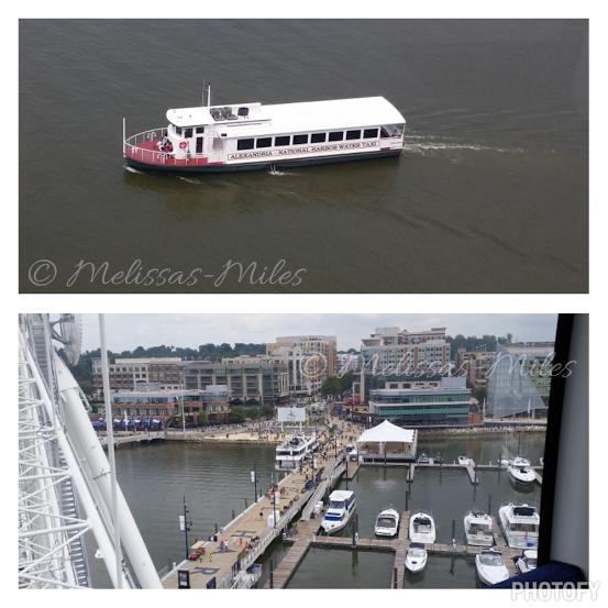The Potomac River.